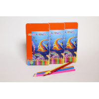 Colouring pencils,12 ass cols,in case